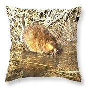 The Muskrat Throw Pillow