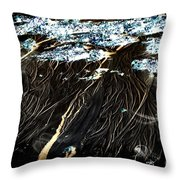 The Mystery Beneath The Water Throw Pillow