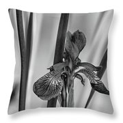 The Mystery Of Spring 2 Bw Throw Pillow