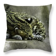 The Napping Rock Throw Pillow