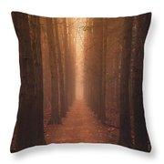 The Narrow Path Throw Pillow