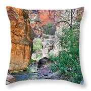 The Narrows Of The Virgin River  Throw Pillow