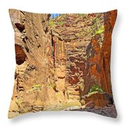 The Narrows Study 2 Throw Pillow