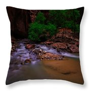 The Narrows Waterfall Zion National Park Throw Pillow by Scott McGuire
