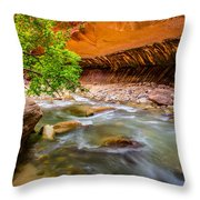 The Narrows Zion National Park Throw Pillow by Scott McGuire