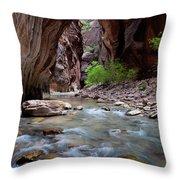 The Narrows, Zion National Park, Utah Throw Pillow