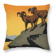 The National Parks Preserve Wild Life Vintage Travel Poster Throw Pillow