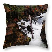 The Natural Bridge Gorge Throw Pillow