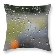 The Natural Lens That Is A Raindrop Throw Pillow