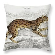 The Naturalist Library Throw Pillow