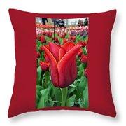 The Nederlands Tulip Festival 1 Throw Pillow