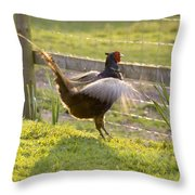 The Need Of Flying Throw Pillow