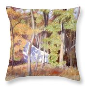 The Neighbor In Back Throw Pillow
