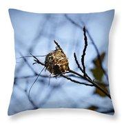 The Nest 1 Throw Pillow