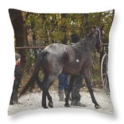 The New Horse Throw Pillow