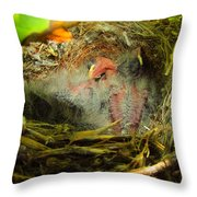 The Next Generation Hatched Throw Pillow