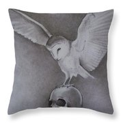 The Night Flier Throw Pillow