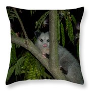 The Night Visitor Throw Pillow