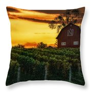 The North Country Throw Pillow
