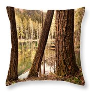 The Not To Distant Shore Throw Pillow