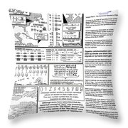The Numerical Alphabet Of Ogam Throw Pillow