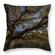 The Oak By The Side Of The Road Throw Pillow