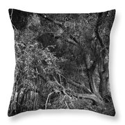 The Oak Throw Pillow