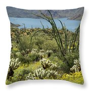 The Ocotillo View Throw Pillow