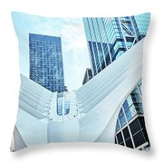 The Oculus Throw Pillow