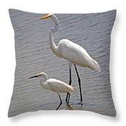 The Odd Couple Throw Pillow