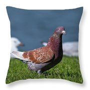 The Odd One 066 Throw Pillow