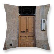 The Old Door. Throw Pillow