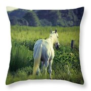 The Old Grey Mare Throw Pillow