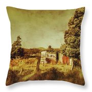 The Old Hay Barn Throw Pillow