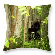 The Old Homestead #10 Throw Pillow