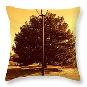 The Old Lantern In The Park Throw Pillow
