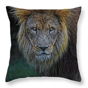 The Old Lion Throw Pillow