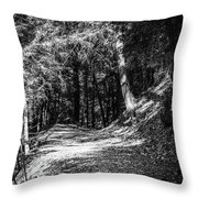 The Old Logging Road Throw Pillow