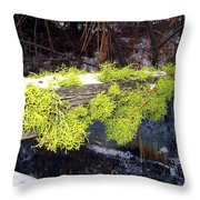 The Old Mossy Flume Throw Pillow