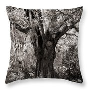 The Old Oak Is Still Standing Throw Pillow