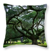 The Old Oak Throw Pillow by Perry Webster