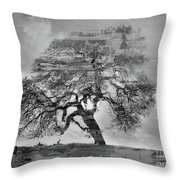 The Old Oak Tree Standing Alone  Throw Pillow