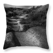 The Old Stone Track Monochrome Landscape Throw Pillow