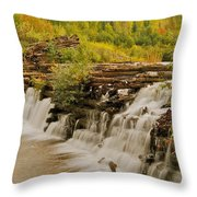 The Old Wooden Dam Throw Pillow