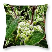 The Olde Grapevine Throw Pillow