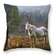 The Olde Gray Horse Throw Pillow by Ken Barrett