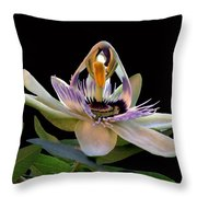 The Opening Of A Passion Throw Pillow