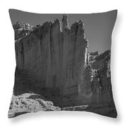 612732-the Oracle  Throw Pillow