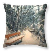 The Orange Bench Throw Pillow