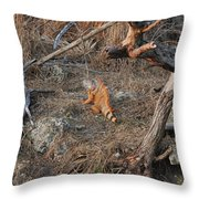 The Orange Iguana Throw Pillow